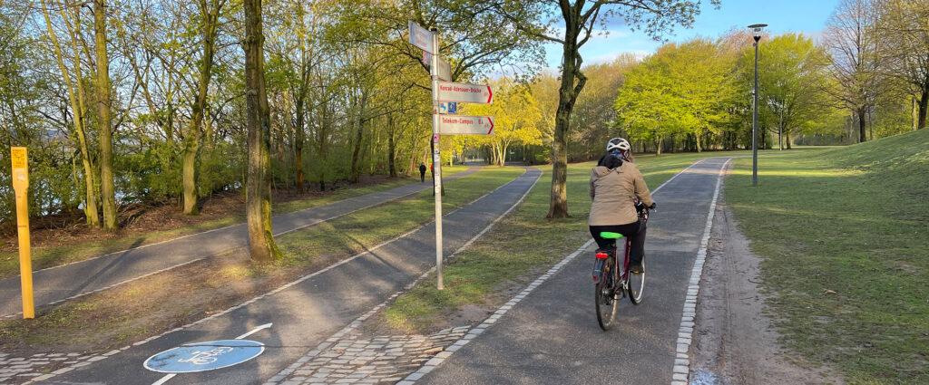 Radweg Rheinaue